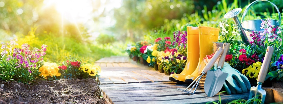 How to maintain a garden | Name something a gardener does